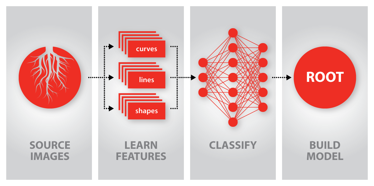 WinCan Convolutional Neural Network